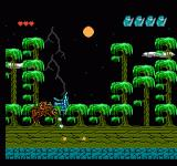 Challenge of the Dragon NES The Amazonian Dragoneer, boss of the forest level